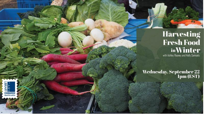 Wed., Sep.22 at 1 PM: Harvesting Fresh Food in Winter with Ashley Rooney and Holly Samuels